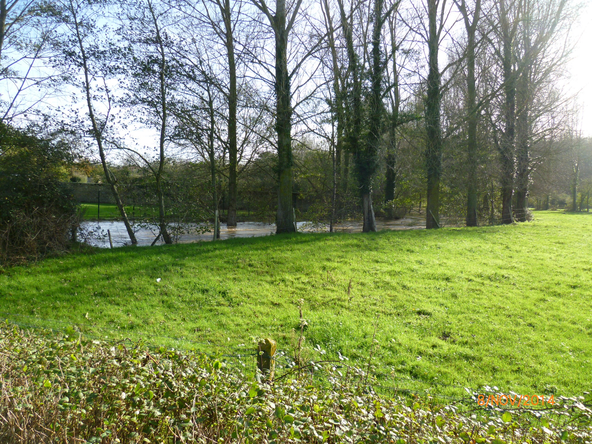 W20141108_Wimille pont mairie 1405